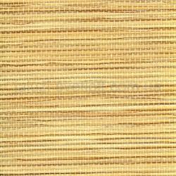 shukatan-89-022