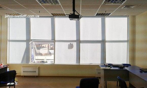 светлые рулонные шторы на многочисленных окнах офиса